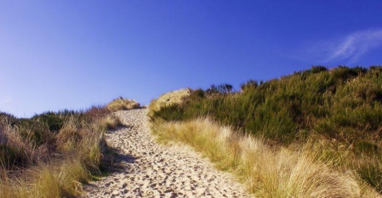Photo of Hold ferie ved det skønne Vesterhav