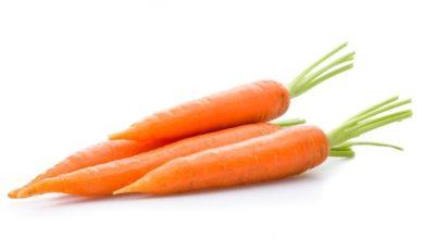 Photo of Sund mad kan give en sund krop og en bedre hverdag